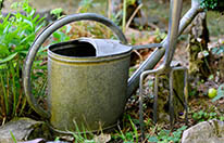 watering-can-3630281_1920
