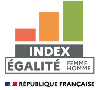 Index Egalité Hommes/Femmes Egalité professionnelle CERDYS